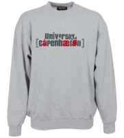 Danglish unisex sweatshirt
